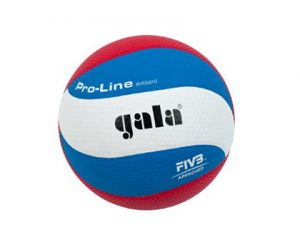 gala volleyball